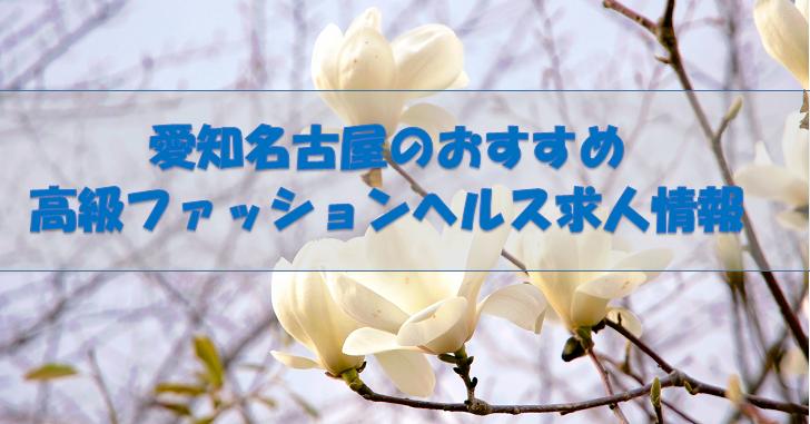 愛知名古屋のおすすめ高級ファッションヘルス求人情報